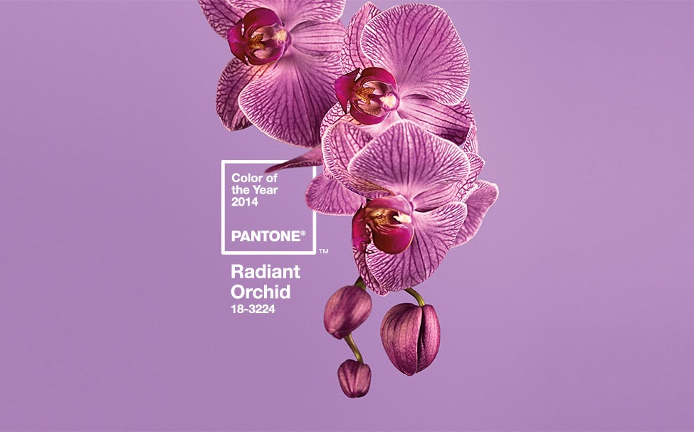 Pantone color of the Year for 2014 ~ Radiant Orchid